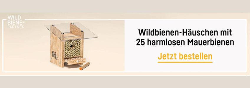 Wildbiene und Partner Gutschein